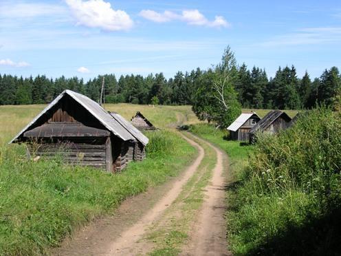 Противоречивые факторы выживания в деревне