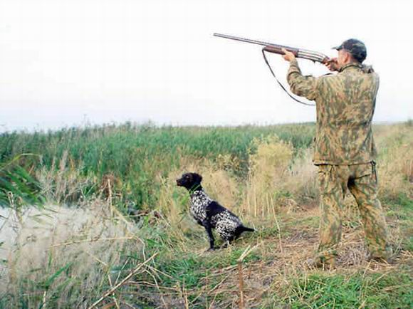 Основные правила безопасности при обращении с охотничьим оружием