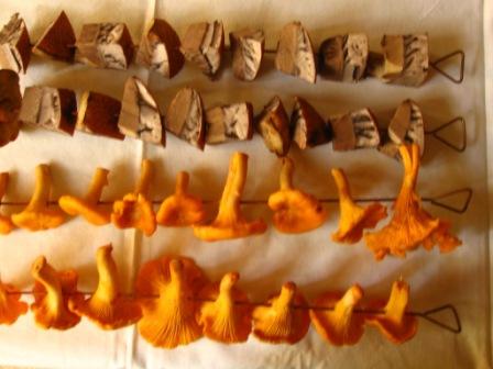 Как сушить грибы в походных условиях