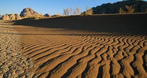 Автономное существование в пустыне