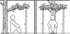 Простейшее укрытие в тайге и густолесье