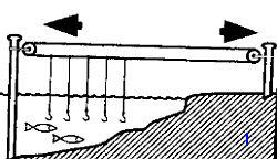 Рыбалка на море в условиях ЧС