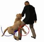 Схватка с собакой